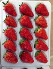 【季節限定】イチゴあきひめ 800g(24~30粒程度) イメージ