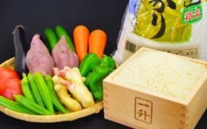 とれたて新鮮! 旬の朝採れ野菜と高知県産コシヒカリ5kgのセット イメージ