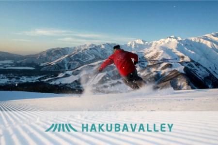 HAKUBA VALLEY 10スキー場共通1日券 1枚