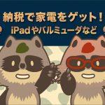 ふるさと納税で家電をGet!アイパッド(iPad mini)やバルミューダ等・・「 食べて美味しいものだけじゃない! 」