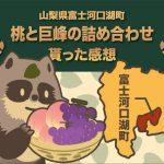 ふるさと納税 山梨県富士河口湖町 桃と巨峰の詰め合わせ