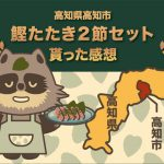 ふるさと納税 高知県高知市 土佐料理司本店 鰹たたき2節セット