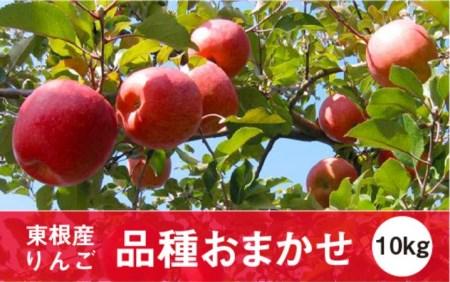 2019年産 りんご(品種おまかせ)10kg JA提供