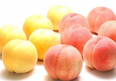 これぞ贅沢! 白桃(硬め)と黄桃の食べ比べセット3kg 秀品 (8~12玉)