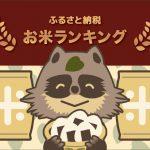 【2018年完全版】お得!ふるさと納税お米ランキング!1万円で20kg以上