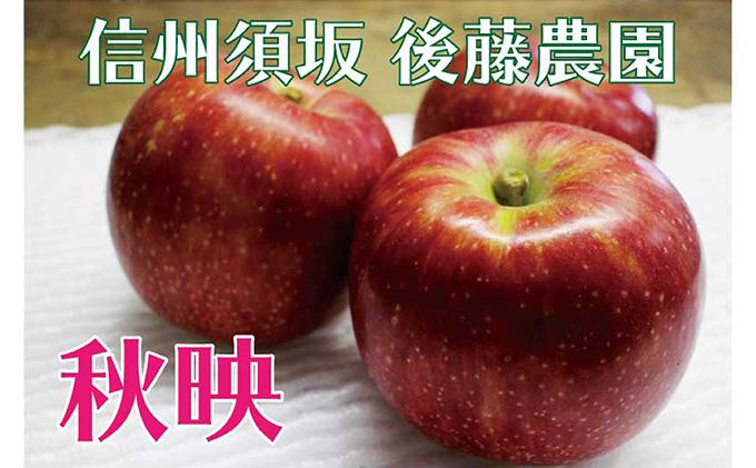 【後藤農園直送】もぎたて!秋映(りんご)約5kg(11~18玉入) イメージ
