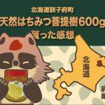 北海道訓子府町の天然はちみつ菩提樹(訓子府産)600gをふるさと納税でもらった感想