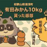 和歌山県湯浅町の有田みかん8kgのふるさと納税で貰った感想