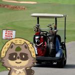 【2019年ふるさと納税】ゴルフクラブ・ゴルフ用品の還元率公開