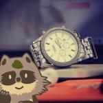 【セイコー、シチズン】2019年ふるさと納税でもらえる時計ランキング