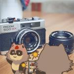 ふるさと納税でお得にカメラがもらえる!還元率ランキング【2019年最新】