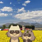 北海道 音更町のふるさと納税のご紹介
