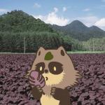 北海道 白糠町のふるさと納税のご紹介