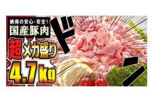 国産豚肉メガ盛り