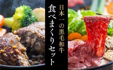 豊後牛ハンバーグ(9個)&頂おまかせすきやき肉(500g)贅沢セット イメージ