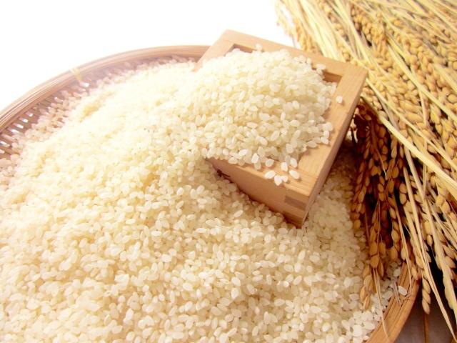 ファミリー農園吉永の【玄米】特別栽培米セット20kg(つや姫&はえぬき) イメージ