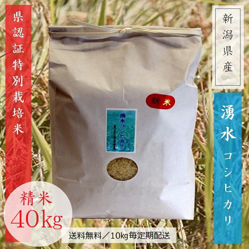 湧水コシヒカリ 精米 40kg (10kg×4ヵ月)定期便