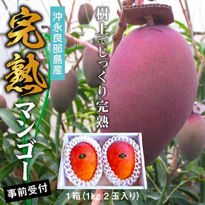 完熟マンゴー(沖永良部島産)  イメージ