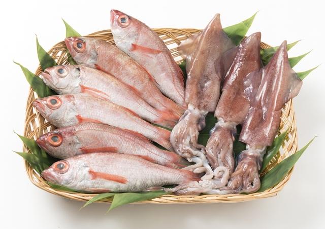 日本海の天然鮮魚詰合せ(大)下処理済み 寄付金額20,000円 イメージ