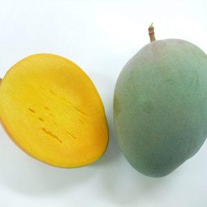 「マンゴーの里」幻のキーツマンゴー2kg(白箱)