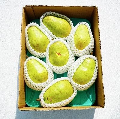 西洋梨(バラード)3kg ご家庭用 イメージ