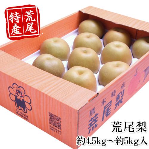 熊本県荒尾市産 荒尾梨 約4.5kg~約5kg イメージ