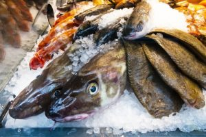 旬の天然魚介類の詰め合わせセット【A】 寄附金額25,000円
