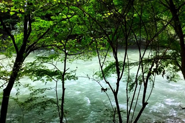 山中温泉 白鷺湯たわらや ペア宿泊券 寄付金額110,000円 イメージ