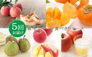 【定期便5回】秋冬フルーツ食べきりコース