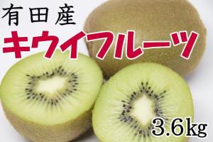有田産キウイフルーツ約3.6kg(サイズおまかせ)