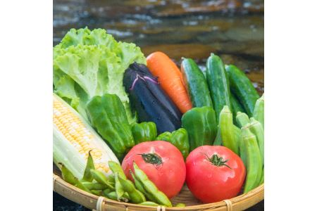 【定期便年4回】阿波の国海陽町 旬のお野菜詰め合わせセット4-5名様以上向け イメージ