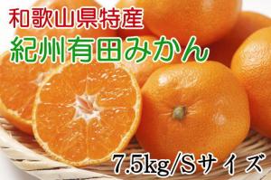 紀州有田みかん7.5kg(