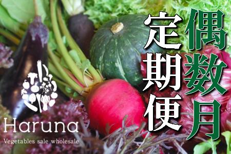 野菜★偶数月定期便 香南市のお野菜詰め合わせコース イメージ