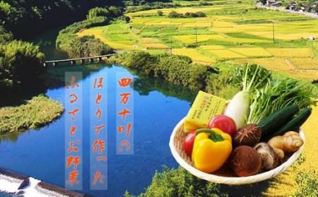 こんなの探してた!【少量多品種】四万十育ちの地採れ野菜セット イメージ