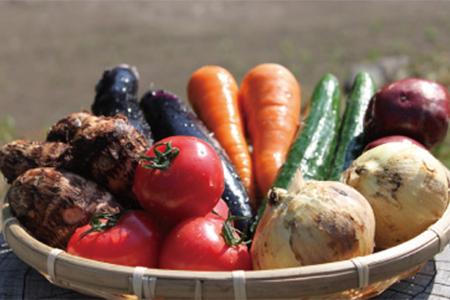 UIC名水うきはの無農薬減農薬お野菜セットS イメージ