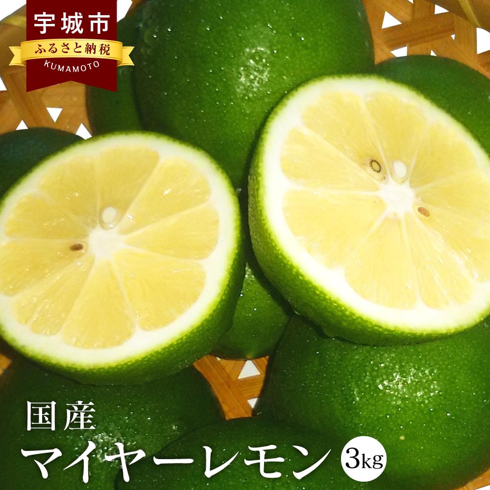 国産 マイヤーレモン 3kg 九州産 熊本県産 グリーンマイヤーレモン イメージ