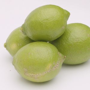 <発送時期指定OK>家庭用レモン3kg