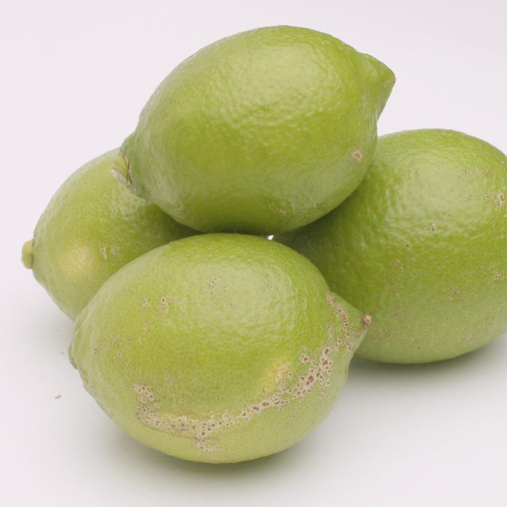 <発送時期指定OK>家庭用レモン3kg イメージ