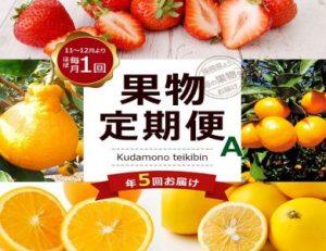 【定期便(5回発送)】果物定期便A(みかん・ネーブル・デコポン・あまおう・ニューサマーオレンジ)2019