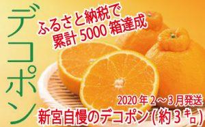 【昨年も大人気】デコポン(約3kg程度)☆2020年配送分