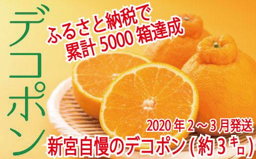 【昨年も大人気】デコポン(約3kg程度)☆2020年配送分 イメージ