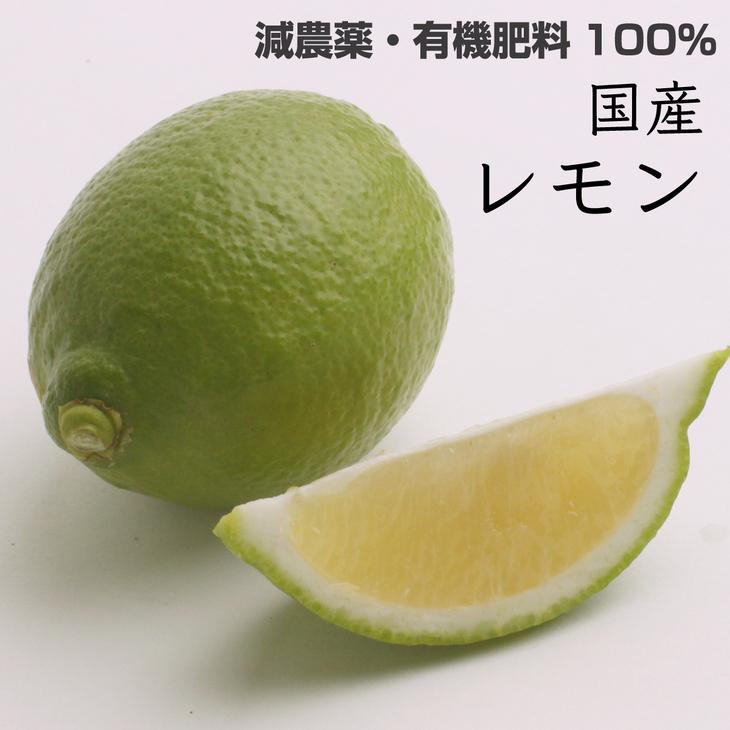 <特別栽培>レモン1.5kg イメージ