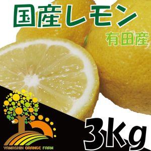 安心安全の国産レモン 省農薬栽培 約3kg