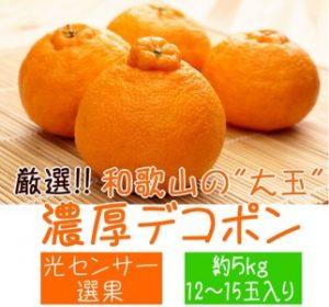 """厳選!!和歌山の濃厚""""大玉""""デコポン"""