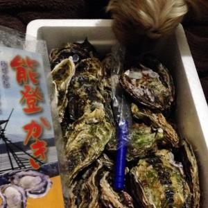 屋湾の真牡蠣