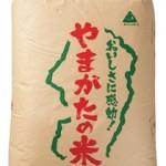 ふるさと納税 山形県天童市 天童産つや姫玄米(27年産米)30kg