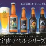 ふるさと納税 岡山県津山市 作州津山ビール 宇宙ラベルシリーズ12本入り