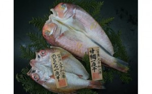 ootashi-nodoguro
