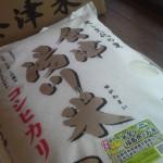 ふるさと納税 福島県湯川村 湯川村産米 60kg