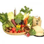 千葉県芝山町の旬野菜の詰め合わせ「大地の恵みセット」+コシヒカリ2kgのふるさと納税で貰った感想